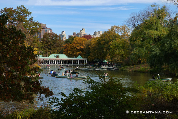 The Loeb Boathouse Central Park